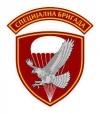 Специјална бригада