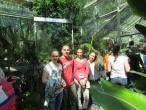 Ботаничка башта 42. класа