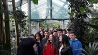 Ботаничка башта - 46. класа